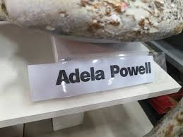 A Place Called Space: Adela Powell