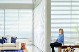 Window Treatment Options For People With Young Kids Or Pets Nashville Window Treatments