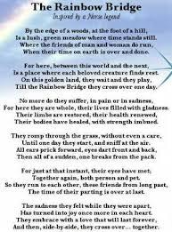 rainbow bridge for loss of pets rainbow bridge rainbow bridge
