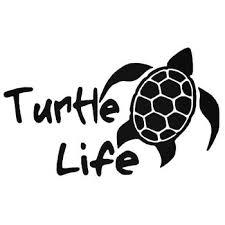 I Brake For Turtles Vinyl Decal Sticker