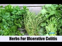 herbal remedy colitis