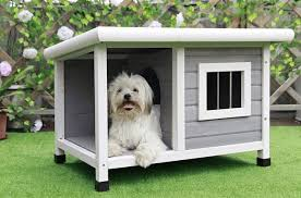 Home Away From Home Best Outdoor Dog Houses Petguide