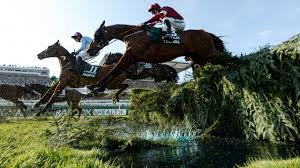 Virtual Grand National 2020: the full ...