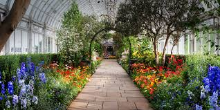 bloom at the new york botanical garden