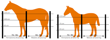 Safe Electric Fences For Equine Horses Gallagher