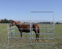 Noble Panels Livestock Fencing And Horse Fencing