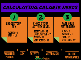 Flexible Plant-Based Dieting: How to Use Macronutrients to Build ...