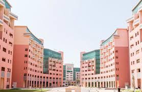 affordable apartments in dubai mybayut