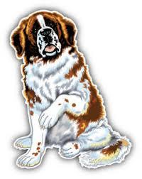 Saint Bernard Dog Animal Car Bumper Sticker Decal Sizes Ebay