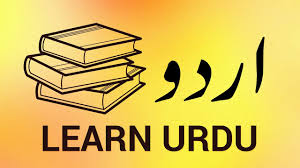 how to set up urdu dictionary you