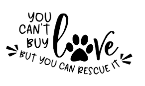 You Can T Buy Love But You Can Rescue It Car Decal Sticker Window Dog Adopt Pet
