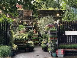 garden centres delivering plants