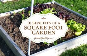 10 benefits of a square foot garden