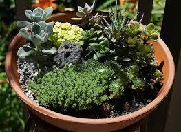 easy diy miniature fairy garden for