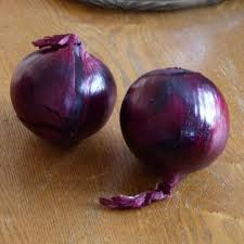 planting and harvesting red onions