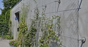Plant Climbing Trellis Ropes Green Wall Wire Mesh Fence For Boundary Wall Buy Plant Climbing Trellis Plant Climbing Ropes Wire Mesh Fence For Boundary Wall Product On Alibaba Com