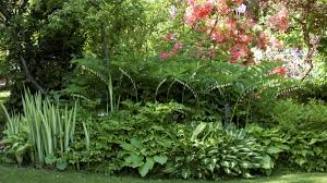 shade gardens 5 planting and design