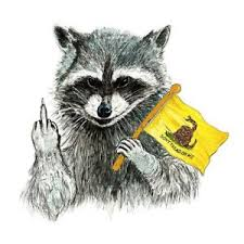 Rude Raccoon Don T Tread On Me Vinyl Decal Sticker Car Truck Cooler Ebay