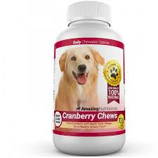 treats for dogs with bladder stones