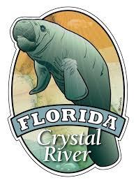 Manatee Florida Crystal River Sticker Decal Die Cut Vinyl 3 7x5 1