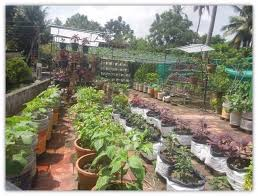 there s an organic farming revolution