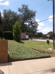 Outreach Health Services - Richardson, TX, 251 W Renner Rd, Richardson, TX  75080, USA