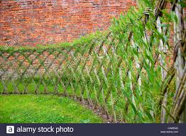 Live Willow Woven Screen Fencing Or Fedge England Uk Stock Photo Alamy