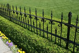 A Beautiful Wrought Iron Fence In Black With A Manicured Hedge Growing Beneath And A Small Bed Of Flowers Nearest Brick Fence Fence Landscaping Backyard Fences