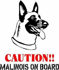 Caution Belgian Malinois On Board Dog Window Vinyl Decal Stickers Puppy Paw K9 Ebay