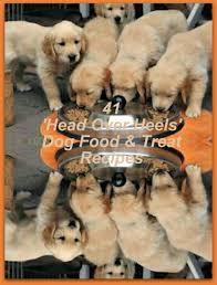 homemade dog food treats recipes