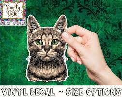 Bengal Decal Etsy