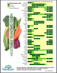 which vegetables can i plant now in