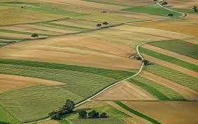 Результат пошуку зображень за запитом картинки ринок землі в Україні