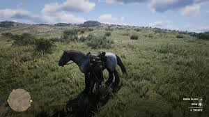 Red Dead Redemption 2 How To Change Your Horse