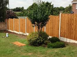 Which Plants Will Damage My Fence Barnard Fencing