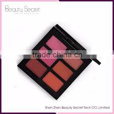 makeup brands 6 color blush palette