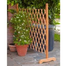 How To Build A Collapsible Garden Trellis Diy Projects For Everyone Diy Garden Trellis Garden Trellis Diy Trellis