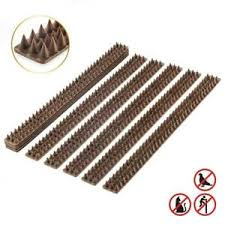 Anti Climb Spikes Cat Bird Human Fence Wall Windowsill Gates Sheds 5 Meter Brown Ebay