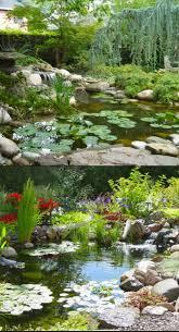 outdoor pond ideas 21 garden pond ideas