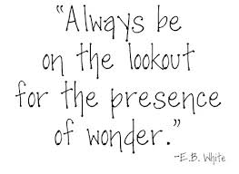 always be on the lookout for the presence of wonder e b white