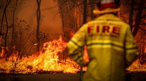 Australia wildfires: Here's what you ...