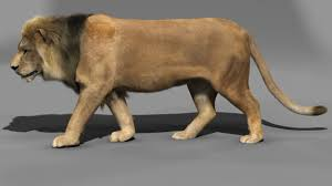 Lion 3D Model in Cat 3DExport