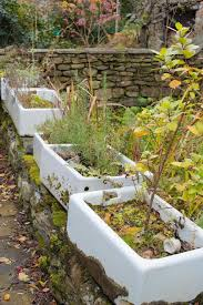 a row of old butler sinks used as