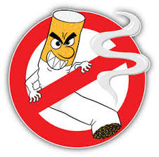 Funny No Smoking Sign Car Bumper Sticker Decal 5 X 5 Ebay