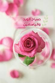 صباح الورد والياسمين Good Morning Beautiful Morning Rose