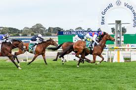Steel Prince wins a thrilling Geelong Cup