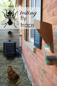 the best homemade fly trap and it