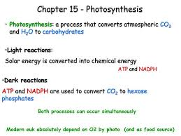 ppt chapter 15 photosynthesis
