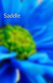 Saddle - {MP3 ZIP} Download Moments to Memories - EP by Adeline ...