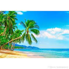 الشاطئ الاستوائية الخلفيات للتصوير السماء الزرقاء البحر